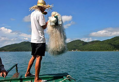Khám phá và thưởng thức hương vị cá mòi thơm ngon lạ Bản Sen