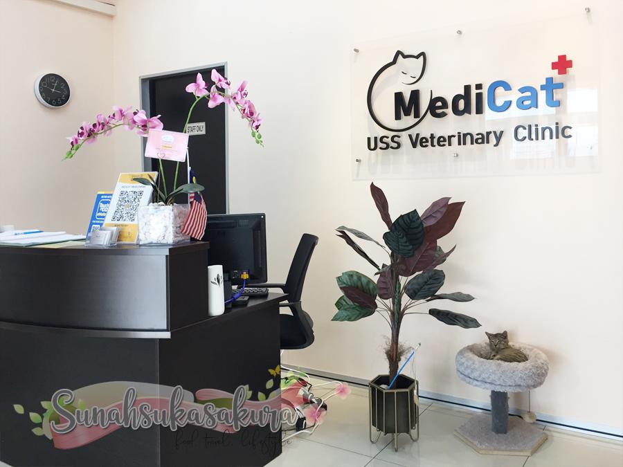 Shimmy Pergi MediCat+ USS Veterinary Clinic Taman Teratai