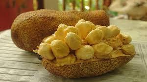 manfaat-buah-cempedak-bagi-kesehatan,www.healthnote25.com