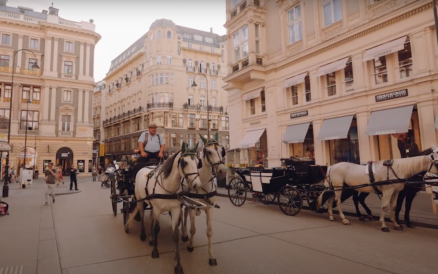 Carriage in the middle of the city