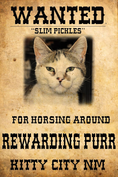 Wanted Posters for Animals Cats