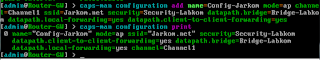 CAPsMAN Configuration