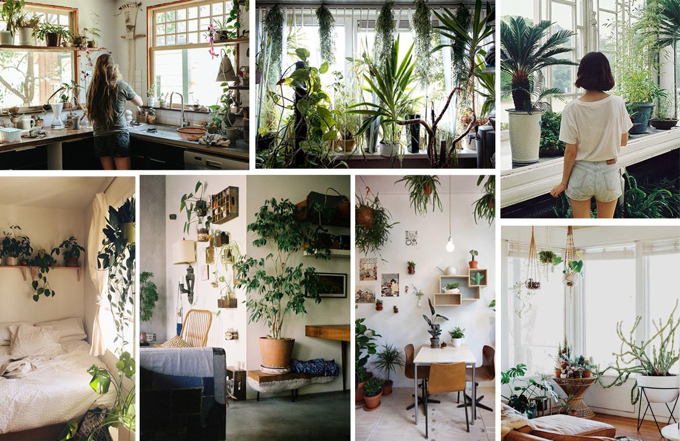 Planten slaapkamer ecosia