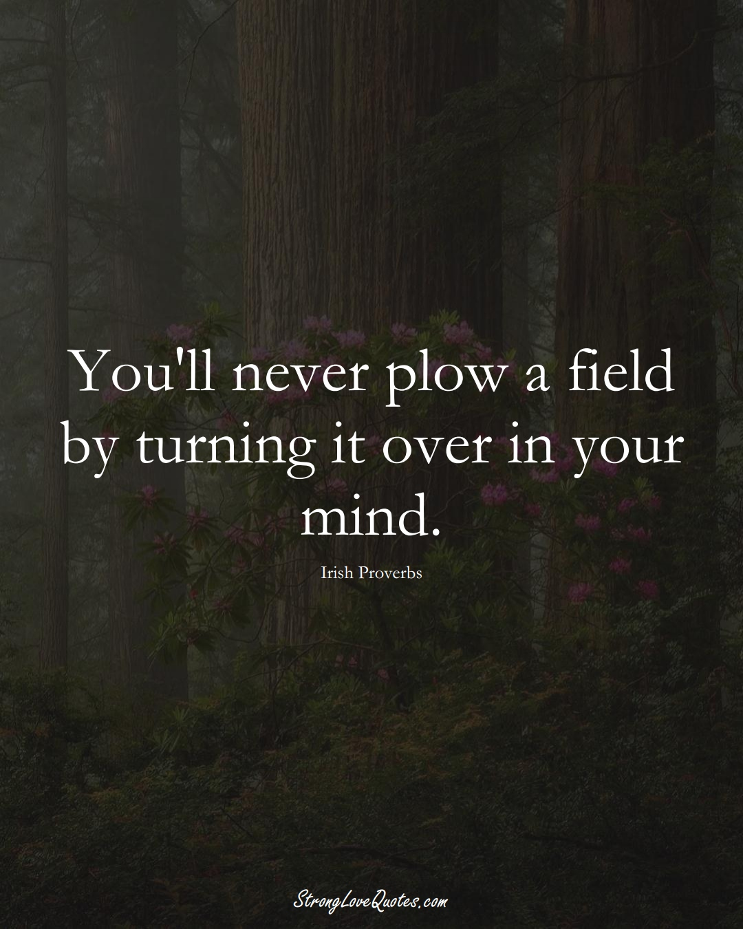 You'll never plow a field by turning it over in your mind. (Irish Sayings);  #EuropeanSayings