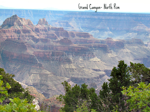 Las Vegas, Grand Canyon, Zion Park, Strastosphere, Mermaid
