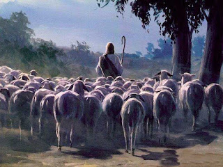 O Bom Pastor – Provisão, Presença e Proteção