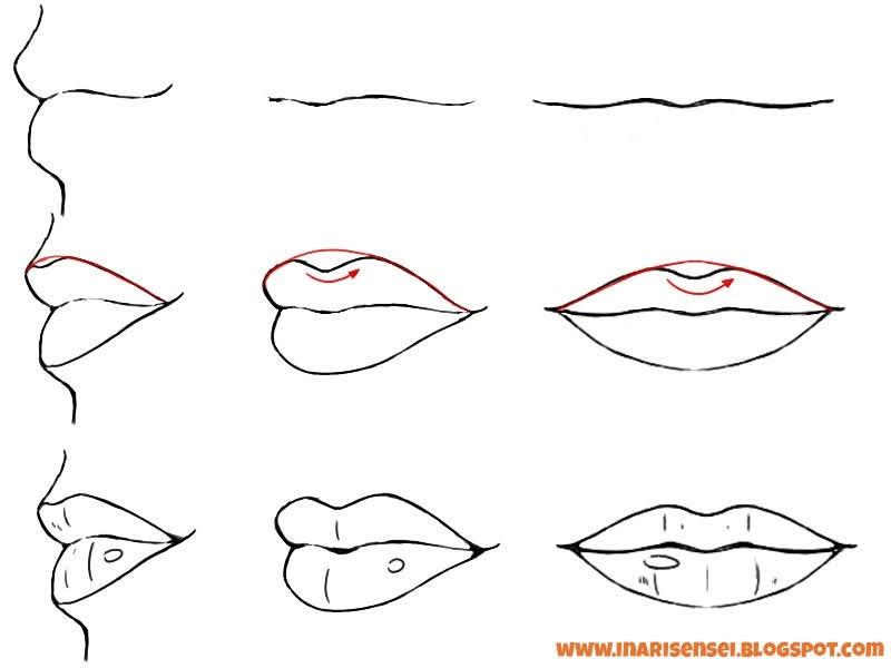 Dessiner les lèvres de profil, de côté et de face