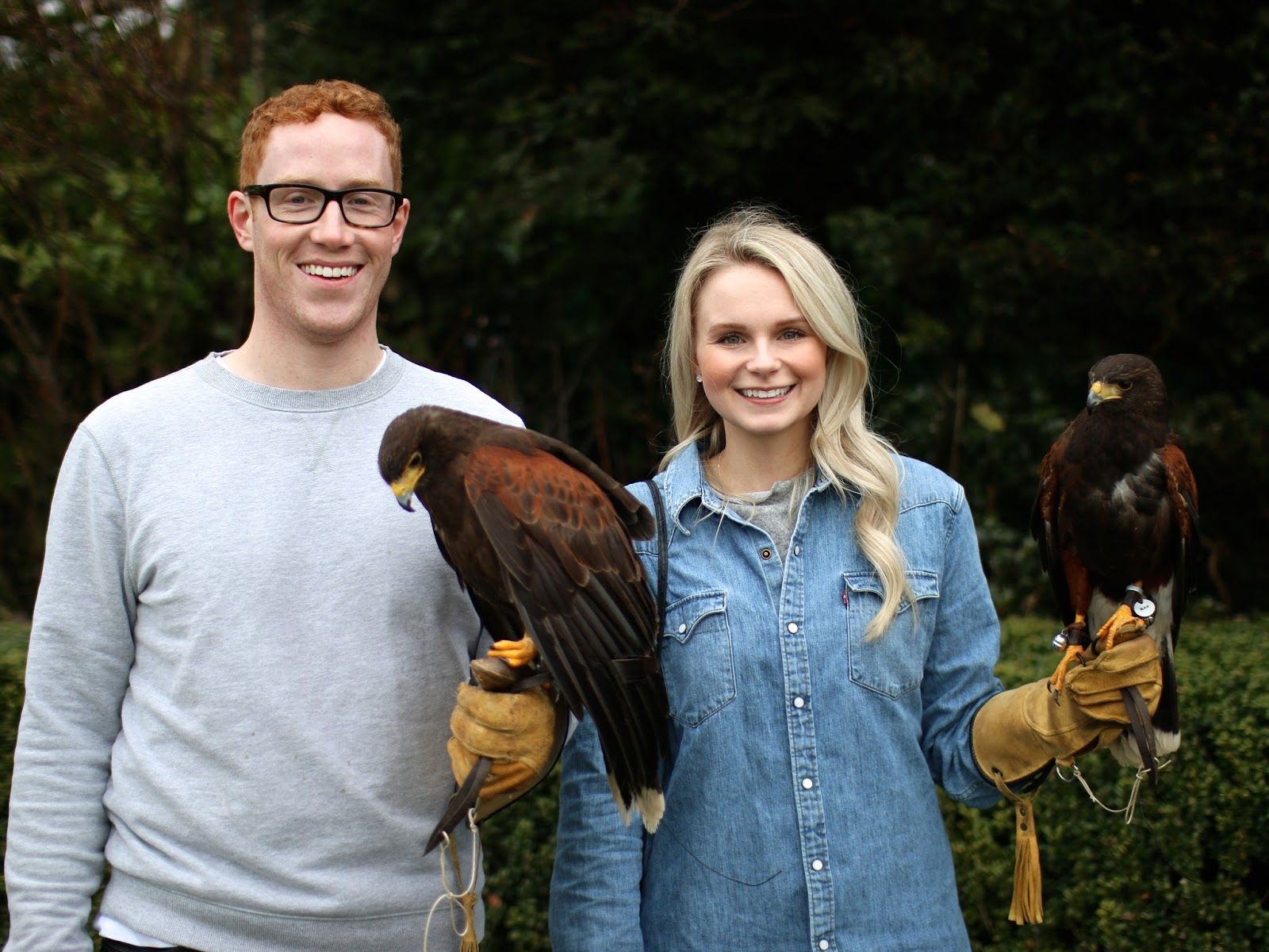 falconry school with hawks in scotland