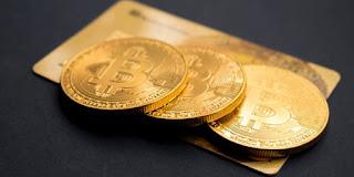Prepare to Lose All Your Money, Warn Crypto Investors
