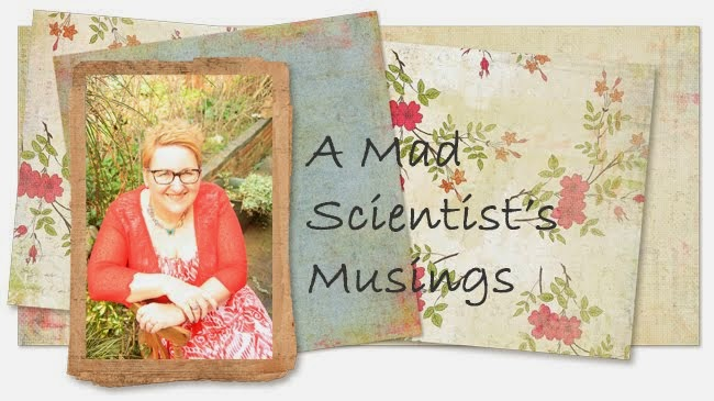 A mad scientists musings.......
