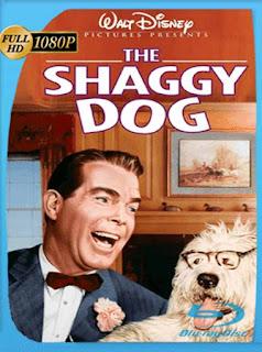El Perro Humano [1959] HD [1080p] Latino [GoogleDrive] SilvestreHD