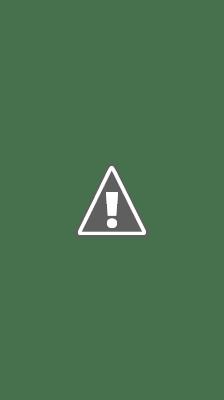 志志乃村神社-境内社(美保社)