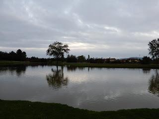 セッラヴァッレ公園内の池
