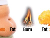 8 Makanan Pembakar Lemak terhebat dan terbaik