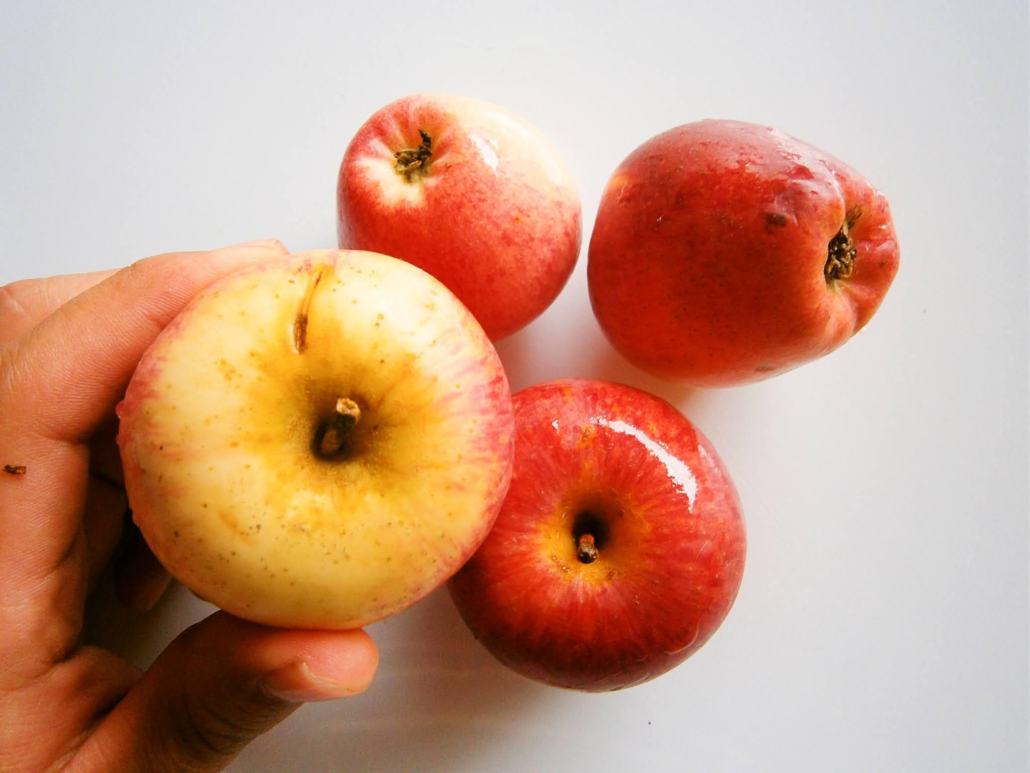 Manzanas frescas puestos sobre un fondo de color blanco