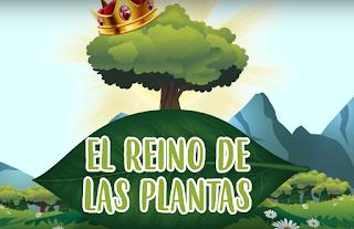 Vídeo: As plantas