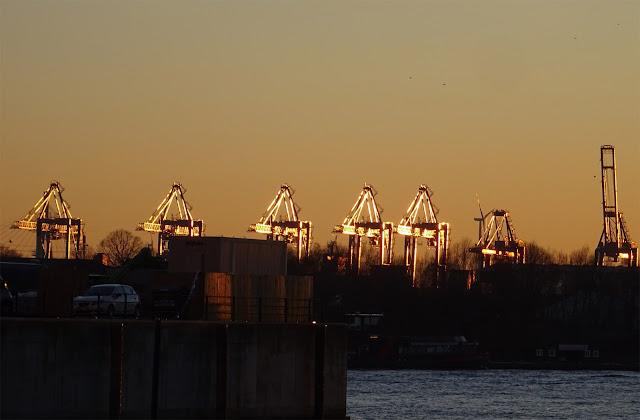 Hafenkräne mit Sonnenstrahlen am Baumwall in Hamburg