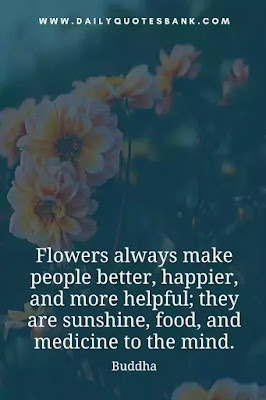 Read beautiful inspirational flower quotes love, life, wisdom, friend, family, dead, garden, dream, sadness, funny and philosophy.