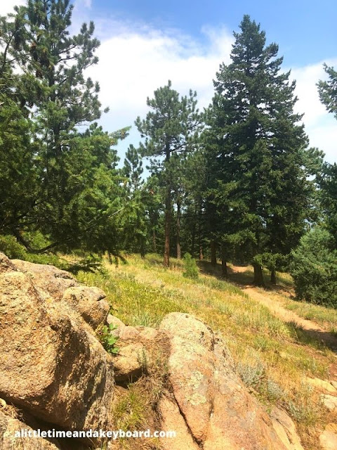 Boulders and bristly evergreen pines crafted a contrast.