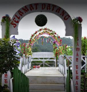 Panorama Bukit Bintang Bogor