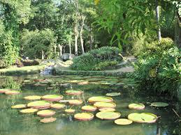 Moramos no meio das cidades urbanas, e muitas vezes ficamos longe do contato com a natureza, mas no mundo há muitos jardins lindos que precisam ser visitados. Hoje o blog reuniu 6 jardins lindos pra você conhecer;