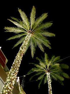 Los Angeles Palm Tree Christmas Lights