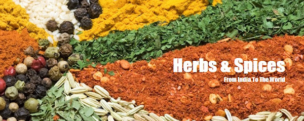 Sample Herbs Spices