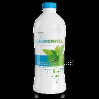 https://pusat.synergyworldwide.com/en-us/shop/product/Liquid%20Chlorophyll