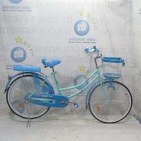24 exotic city bike