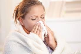 melia biyang untuk obat flu