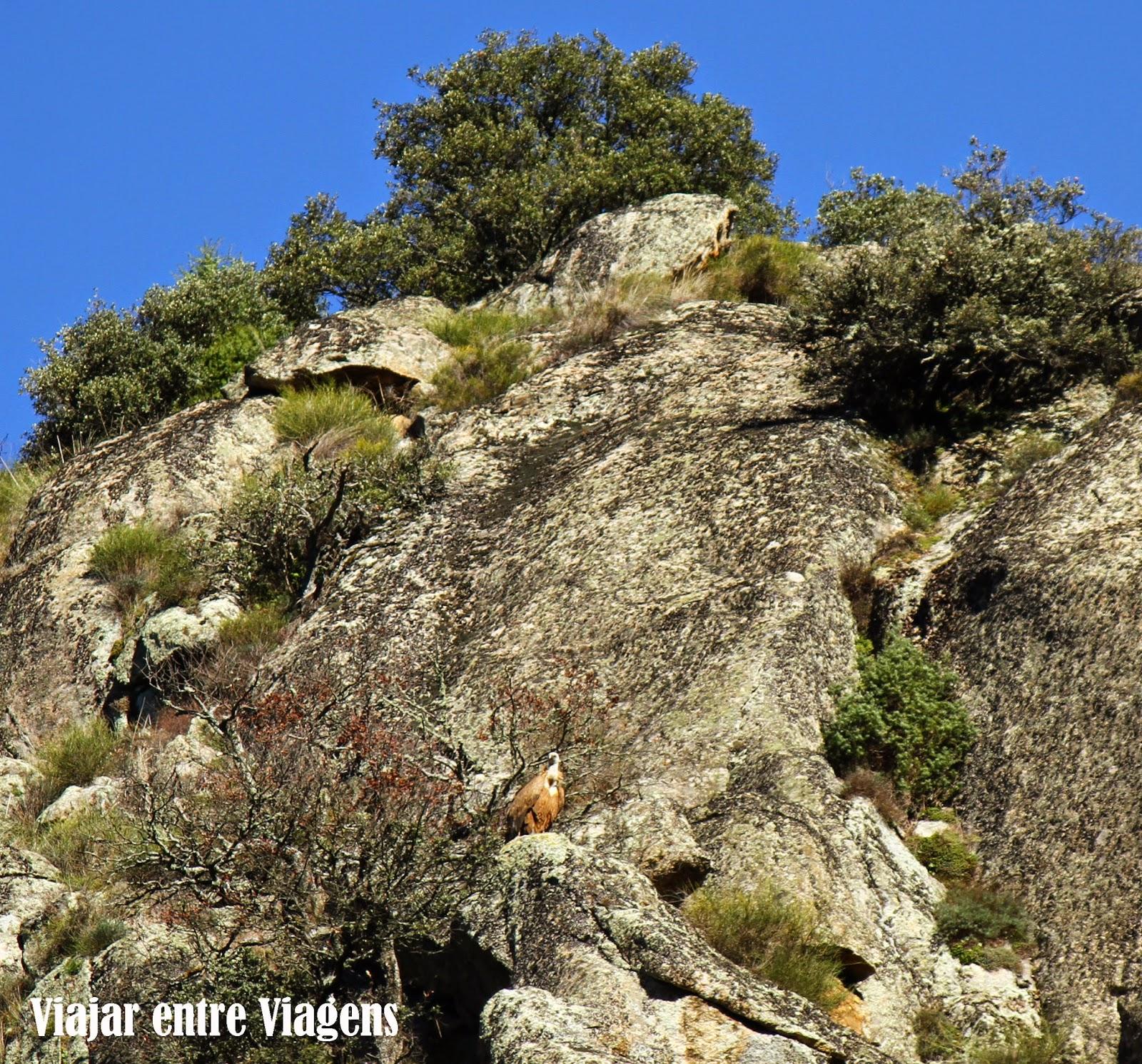 Explorando a beleza natural e cultural de Miranda do Douro | Portugal