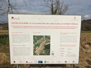 Sign explaining a project to plant flax (Linum usitatissimum) and cannabis (Cannabis sativa) for textile use.