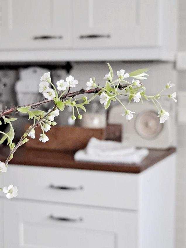 norjanangervo, oksienkukittaminen, keittiössä, keittiön sisustus, vaalea koti, maalaisromanttinen koti