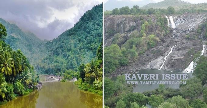 காவிரி நதிநீர் பிரச்சனை | Cauvery Issue