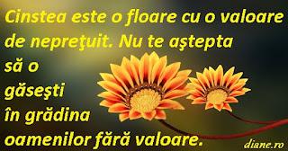 Cinstea este o floare cu o valoare de nepreţuit. Nu te aştepta să o găseşti în grădina oamenilor fără valoare.