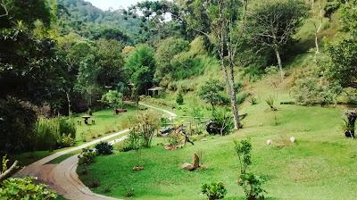 Roteiro de viagem: Santo Antônio do Pinhal