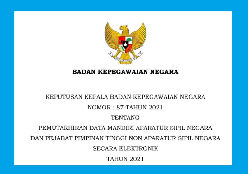 gambar keputusan kepala bkn no 87 tahun 2021