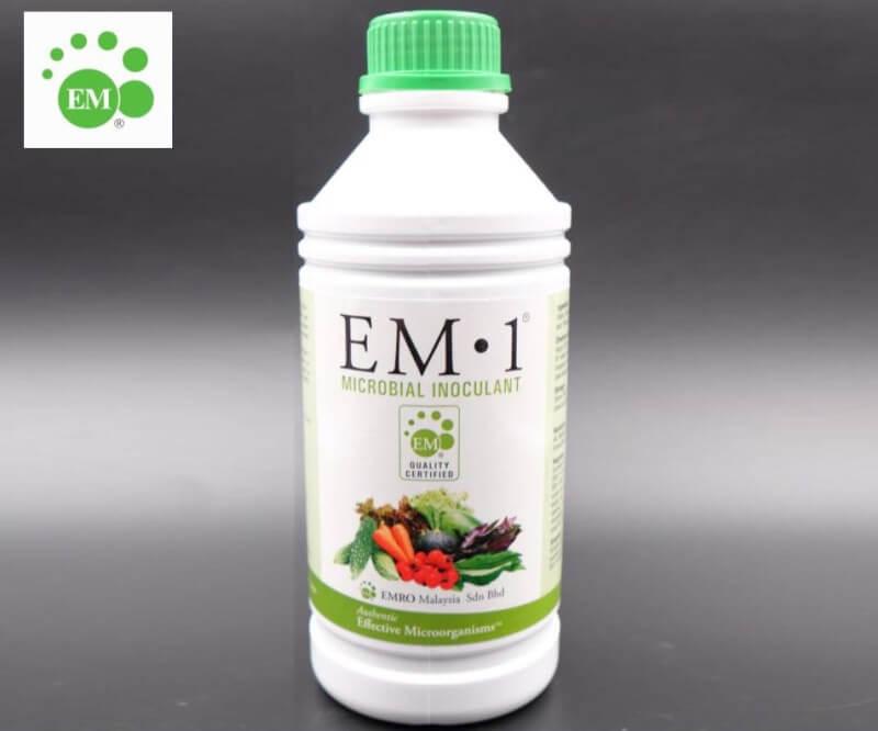 Effective Microbe (EM)