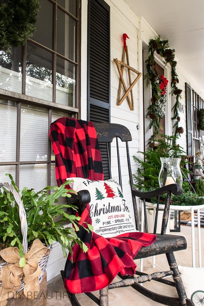 Christmas cactus on Texas porch