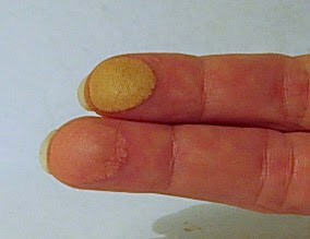 my fingers with Physician's Formula Bronzer & Blush
