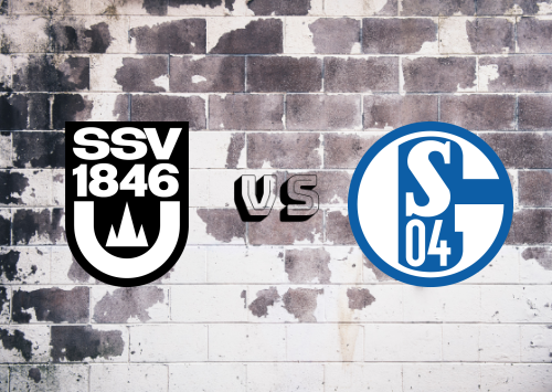 Ulm vs Schalke 04  Resumen