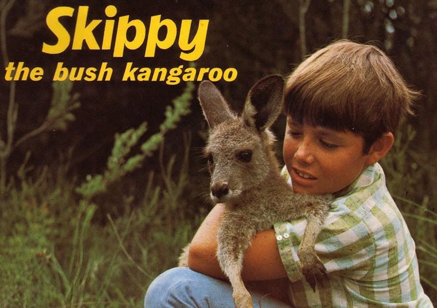 Avengers In Time 1966 Television Skippy The Bush Kangaroo