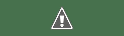 Dibujo de la molécula de la talidomida (Fármaco teratogénico)