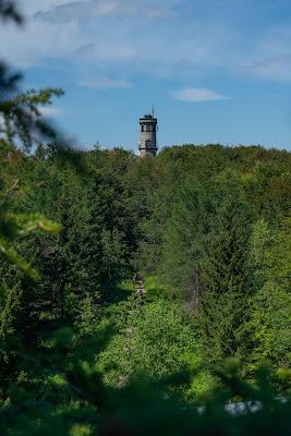 Oberlausitzer Bergweg | Etappe von Waltersdorf nach Oybin | Wandern im Zittauer Gebirge | Sachsen 17