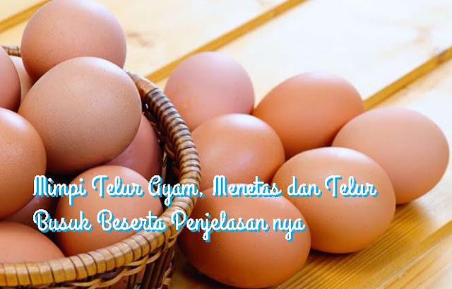 mimpi telur ayam telur menetas