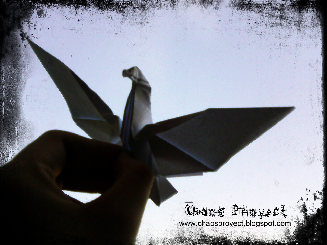 Origami Dove Diagram 4 Wire Well Pump Wiring Chaos Proyect Paloma De B Of Peace