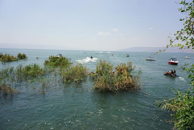 חוף הכנרת ליד המפל הנסתר