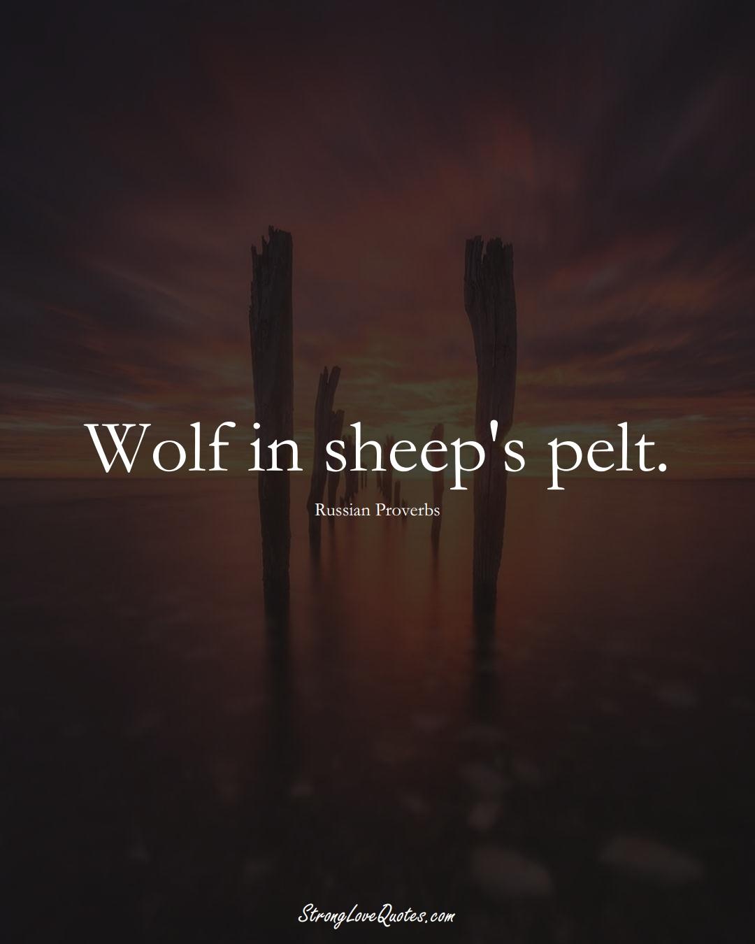 Wolf in sheep's pelt. (Russian Sayings);  #AsianSayings