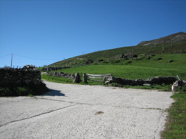 Rutas Montaña Asturias: Pista al Cueto Arbás en el Puerto Leitariegos