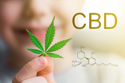 Know about 8 Best CBD Subscription Boxes Types